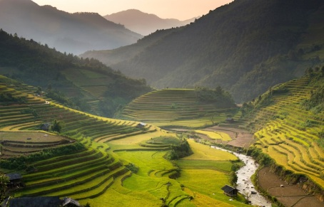 Chinese rice teerraces 2
