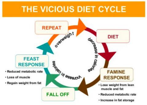 vicious circle 2